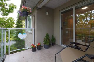 Photo 17: 408 951 Topaz Ave in Victoria: Vi Hillside Condo Apartment for sale : MLS®# 841643