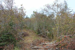 Photo 1: Lot 1 Lake Doucette Road in Lake Doucette: 401-Digby County Vacant Land for sale (Annapolis Valley)  : MLS®# 202021484