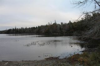 Photo 4: Lot 1 Lake Doucette Road in Lake Doucette: 401-Digby County Vacant Land for sale (Annapolis Valley)  : MLS®# 202021484