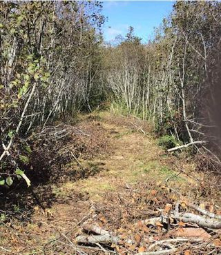 Photo 2: Lot 1 Lake Doucette Road in Lake Doucette: 401-Digby County Vacant Land for sale (Annapolis Valley)  : MLS®# 202021484