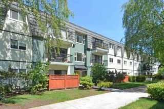 """Main Photo: 244 8111 B RYAN Road in Richmond: South Arm Condo for sale in """"MAYFAIR COURT"""" : MLS®# R2388410"""