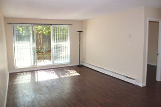 """Photo 15: 117 2033 TRIUMPH Street in Vancouver: Hastings Condo for sale in """"MacKenzie House"""" (Vancouver East)  : MLS®# R2503694"""