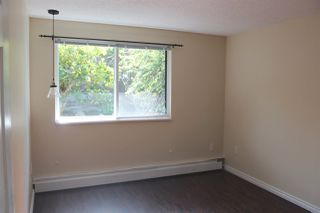 """Photo 16: 117 2033 TRIUMPH Street in Vancouver: Hastings Condo for sale in """"MacKenzie House"""" (Vancouver East)  : MLS®# R2503694"""