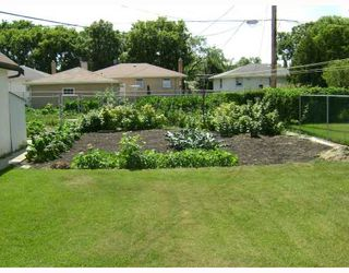 Photo 4: 326 DEVON Avenue in WINNIPEG: North Kildonan Residential for sale (North East Winnipeg)  : MLS®# 2815093