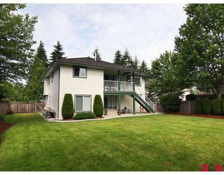 Photo 10: 9074 206TH Street in Langley: Walnut Grove House for sale : MLS®# F2913741