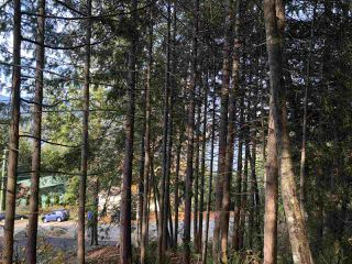 "Photo 3: LOT 89 SKOOKUMCHUK Road in Sechelt: Sechelt District Land for sale in ""SANDY HOOK"" (Sunshine Coast)  : MLS®# R2416111"