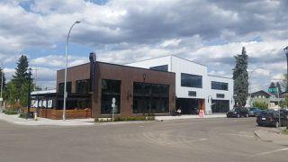 Photo 16: 6915 93 Street in Edmonton: Zone 17 House for sale : MLS®# E4208466