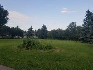Photo 5: 6915 93 Street in Edmonton: Zone 17 House for sale : MLS®# E4208466