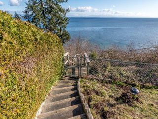 Photo 52: 4085 S Island Hwy in : CR Campbell River South Single Family Detached for sale (Campbell River)  : MLS®# 854456