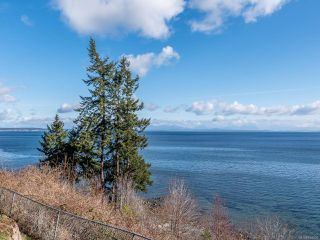 Photo 44: 4085 S Island Hwy in : CR Campbell River South Single Family Detached for sale (Campbell River)  : MLS®# 854456