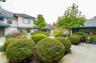 "Photo 31: 24 5666 208 Street in Langley: Langley City Townhouse for sale in ""THE MEADOWS"" : MLS®# R2521188"