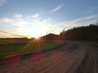 Photo 5: 50475 RR222a: Rural Leduc County Rural Land/Vacant Lot for sale : MLS®# E4172137