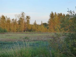 Photo 2: 50475 RR222a: Rural Leduc County Rural Land/Vacant Lot for sale : MLS®# E4172137