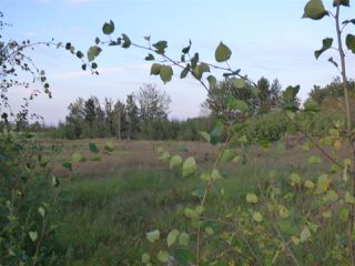 Photo 3: 50475 RR222a: Rural Leduc County Rural Land/Vacant Lot for sale : MLS®# E4172137