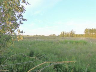 Photo 4: 50475 RR222a: Rural Leduc County Rural Land/Vacant Lot for sale : MLS®# E4172137