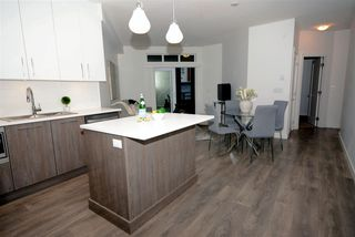 """Photo 14: 214 20829 77A Avenue in Langley: Willoughby Heights Condo for sale in """"WEX"""" : MLS®# R2426060"""