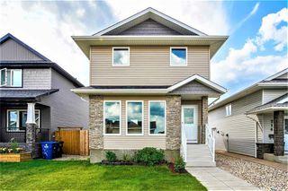 Photo 1: 218 Veltkamp Lane in Saskatoon: Stonebridge Residential for sale : MLS®# SK818098