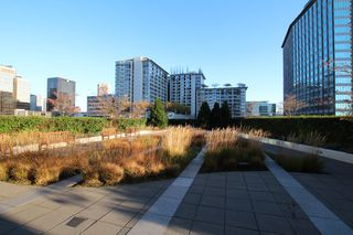 Photo 22: : Vancouver Condo for rent : MLS®# AR086