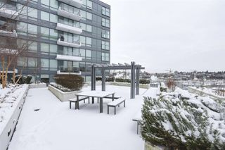 """Photo 19: 1501 159 W 2ND Avenue in Vancouver: False Creek Condo for sale in """"TOWN GREEN AT WEST"""" (Vancouver West)  : MLS®# R2429033"""