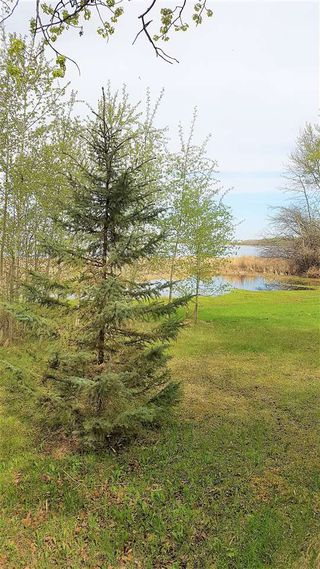 Photo 24: 8 Beech Ave & Pine Parkway: Rural Wetaskiwin County Rural Land/Vacant Lot for sale : MLS®# E4195404