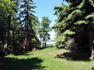 Photo 1: 8 Beech Ave & Pine Parkway: Rural Wetaskiwin County Rural Land/Vacant Lot for sale : MLS®# E4195404