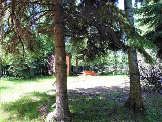Photo 17: 8 Beech Ave & Pine Parkway: Rural Wetaskiwin County Rural Land/Vacant Lot for sale : MLS®# E4195404