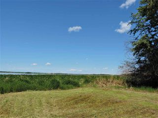 Photo 9: 8 Beech Ave & Pine Parkway: Rural Wetaskiwin County Rural Land/Vacant Lot for sale : MLS®# E4195404