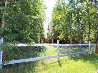 Photo 13: 8 Beech Ave & Pine Parkway: Rural Wetaskiwin County Rural Land/Vacant Lot for sale : MLS®# E4195404