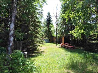 Photo 18: 8 Beech Ave & Pine Parkway: Rural Wetaskiwin County Rural Land/Vacant Lot for sale : MLS®# E4195404