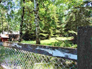 Photo 7: 8 Beech Ave & Pine Parkway: Rural Wetaskiwin County Rural Land/Vacant Lot for sale : MLS®# E4195404