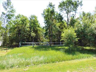Photo 3: 8 Beech Ave & Pine Parkway: Rural Wetaskiwin County Rural Land/Vacant Lot for sale : MLS®# E4195404