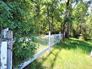 Photo 8: 8 Beech Ave & Pine Parkway: Rural Wetaskiwin County Rural Land/Vacant Lot for sale : MLS®# E4195404