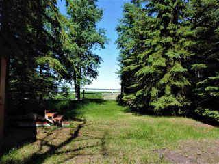 Photo 12: 8 Beech Ave & Pine Parkway: Rural Wetaskiwin County Rural Land/Vacant Lot for sale : MLS®# E4195404