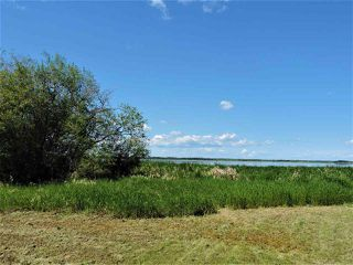 Photo 10: 8 Beech Ave & Pine Parkway: Rural Wetaskiwin County Rural Land/Vacant Lot for sale : MLS®# E4195404