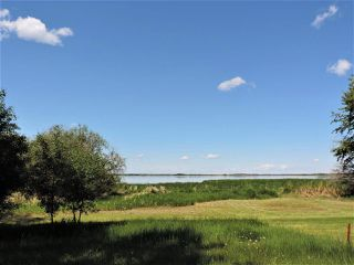 Photo 11: 8 Beech Ave & Pine Parkway: Rural Wetaskiwin County Rural Land/Vacant Lot for sale : MLS®# E4195404