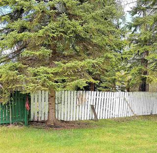 Photo 23: 8 Beech Ave & Pine Parkway: Rural Wetaskiwin County Rural Land/Vacant Lot for sale : MLS®# E4195404