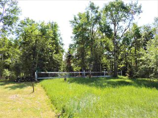 Photo 4: 8 Beech Ave & Pine Parkway: Rural Wetaskiwin County Rural Land/Vacant Lot for sale : MLS®# E4195404