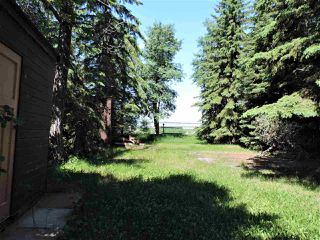 Photo 16: 8 Beech Ave & Pine Parkway: Rural Wetaskiwin County Rural Land/Vacant Lot for sale : MLS®# E4195404