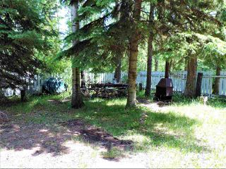 Photo 20: 8 Beech Ave & Pine Parkway: Rural Wetaskiwin County Rural Land/Vacant Lot for sale : MLS®# E4195404