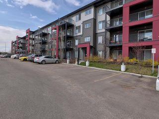 Photo 36: 315 5521 7 Avenue in Edmonton: Zone 53 Condo for sale : MLS®# E4197576