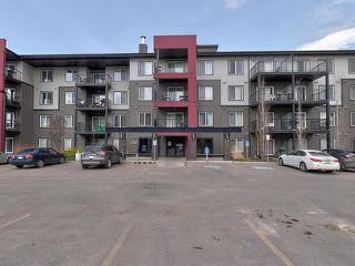Photo 35: 315 5521 7 Avenue in Edmonton: Zone 53 Condo for sale : MLS®# E4197576