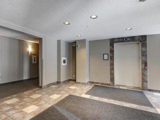 Photo 31: 315 5521 7 Avenue in Edmonton: Zone 53 Condo for sale : MLS®# E4197576