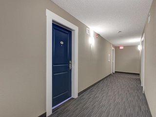 Photo 32: 315 5521 7 Avenue in Edmonton: Zone 53 Condo for sale : MLS®# E4197576
