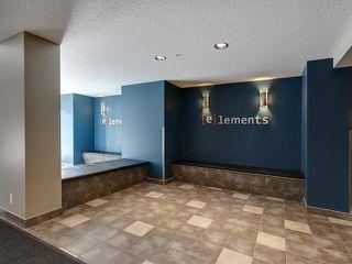 Photo 30: 315 5521 7 Avenue in Edmonton: Zone 53 Condo for sale : MLS®# E4197576