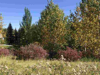 Photo 29: 6 1008 BUTTERWORTH Point in Edmonton: Zone 14 House Half Duplex for sale : MLS®# E4209273