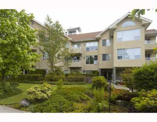 Photo 10: 102 5626 LARCH Street in Vancouver: Kerrisdale Condo for sale (Vancouver West)  : MLS®# V772542