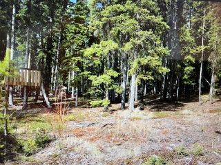 "Photo 5: 59017 BLACKWATER Road in Prince George: Blackwater House for sale in ""BOBTAIL LAKE"" (PG Rural West (Zone 77))  : MLS®# R2460791"