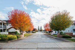 "Photo 18: 80 20554 118 Avenue in Maple Ridge: Southwest Maple Ridge Townhouse for sale in ""COLONIAL WEST"" : MLS®# R2511753"
