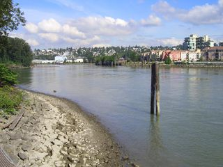 "Photo 49: 217 83 STAR Crescent in New_Westminster: Queensborough Condo for sale in ""RESIDENCE BY THE RIVER"" (New Westminster)  : MLS®# V728524"