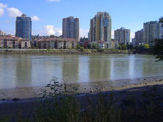 "Photo 47: 217 83 STAR Crescent in New_Westminster: Queensborough Condo for sale in ""RESIDENCE BY THE RIVER"" (New Westminster)  : MLS®# V728524"